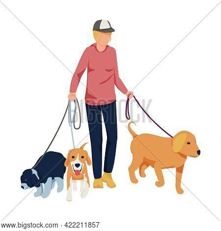Flat Character Walking Three Dogs On Leash Vector Illustration