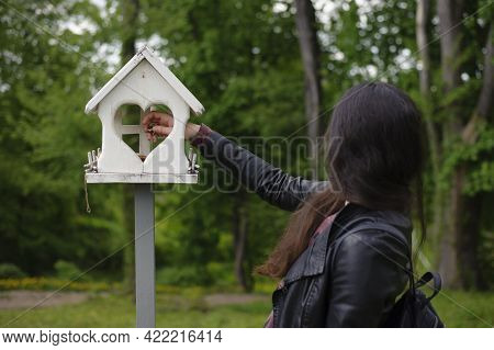Feeds Birds In A Feeder In An Spring Park. Girl Puts Food. Girl Out Of Focus, Rear View. Taking Care