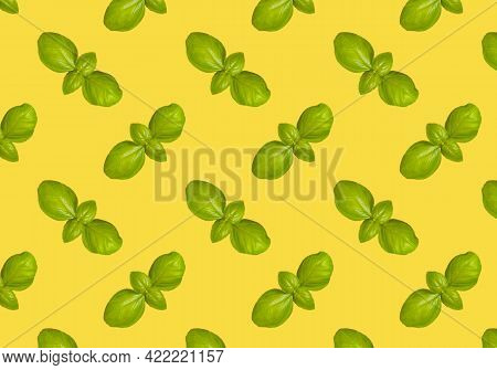 Basil Pattern Isolated On Yellow Background. Frame Made Of Basil Leaves. Flat Lay, Top View