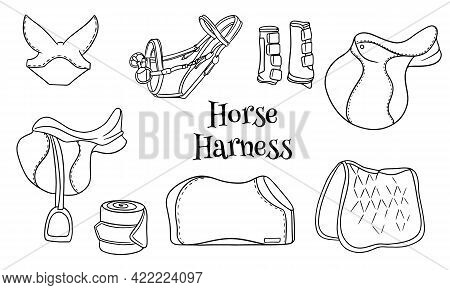 Horse Harness A Set Of Equestrian Equipment Saddle Bridle Blanket Protective Boots In Line Style Col