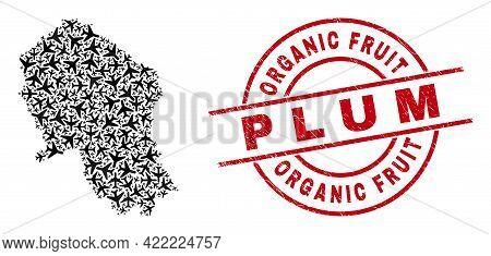 Organic Fruit P L U M Grunge Badge, And Cordoba Spanish Province Map Mosaic Of Air Plane Elements. M