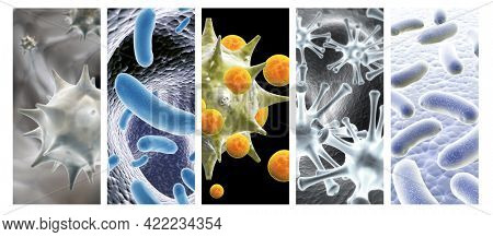 Collection of horizontal or vertical banners with pathogenic bacterias and viruses. Virus under microscope. Fast multiplication of bacteria. Infection and microbe. 3d render