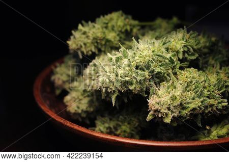 Drying Natural Marijuana Flowers Closeup. Cannabis Growing, Harvest Time. Trimmed Weed In Round Dish