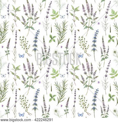 Beautiful Floral Seamless Pattern With Hand Drawn Watercolor Spearmint Flowers. Stock Illustration.