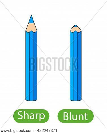 Sharpened And Blunt Pencils. The Concept Of Children's Learning Of The Opposite Adjectives Sharp And