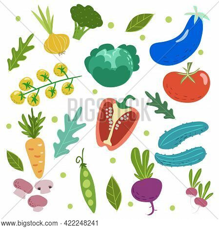 Hand Drawn Doodle Style Vegetables Set. Tomatoes, Cabbage, Pea, Cucumbers, Carrot, Eggplant, Mushroo