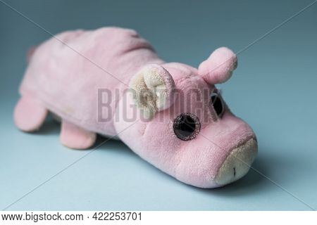 Plush Toy Pink Pig On A Blue Background. Indoors, Day Light Front View.