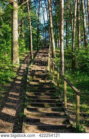Stairs In The Forest Around The Seskines Os (seskines Ozas), Glacial Period  Gravel Ridge In Vilnius