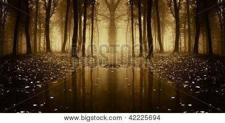 Lake in a strange forest in autumn with fog and light