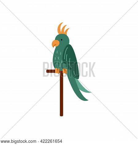 Beautiful Parrot, Colorful Tropical Exotic Bird Sits On A Perch.