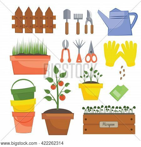 Set Of Different Isolated Garden Tools On A White Background. Different Gardening Equipment And Tool