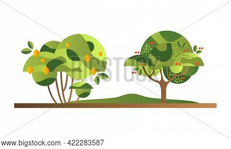 Set Of Fruit Trees With Ripe Fruits, Lemon And Plum Orchard Tree Flat Vector Illustration