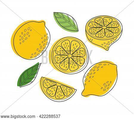 Cute Hand Drawn Outline Vector Lemon Set. Cartoon Summer Fruit Slice, Half Sliced Lemons, Fresh Gree