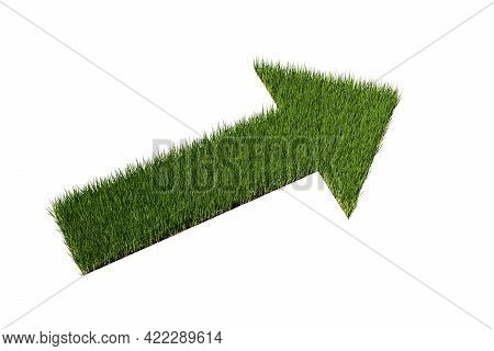 Green Grass Arrow Over White Background, Clean Environment Or Development, Forward Thinking Or Natur