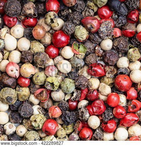Square Food Background - Four Pepper Blend Peppercorns Close Up
