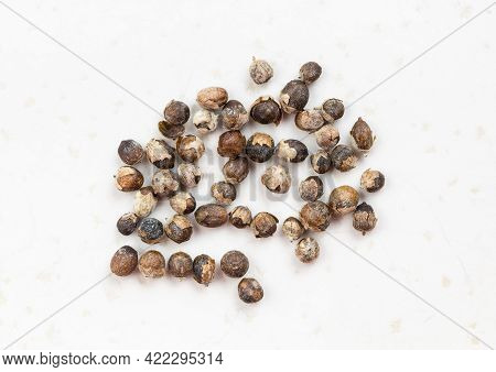 Several Monk's Pepper (vitex) Close Up On Gray Ceramic Plate