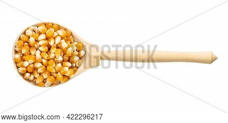 Top View Of Wood Spoon With Raw Maize Corns Isolated On White Background