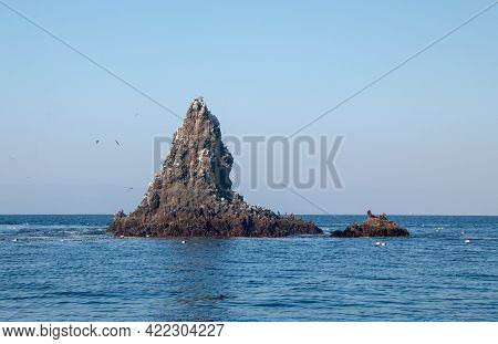 Anacapa Rock Formation On Anacapa Island In The Channel Islands National Park Offshore From The Vent