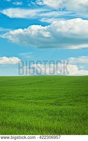 Green Field And Blue Sky With Clouds, Beautiful Meadow As Nature And Environmental Background.
