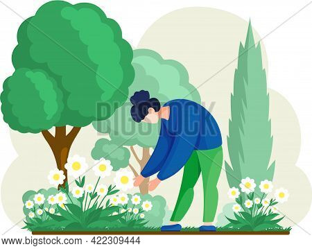 Girl Cultivating Plants On Backyard Flowers On Beautiful Flower Bed, Enjoying White Daisies In Sprin