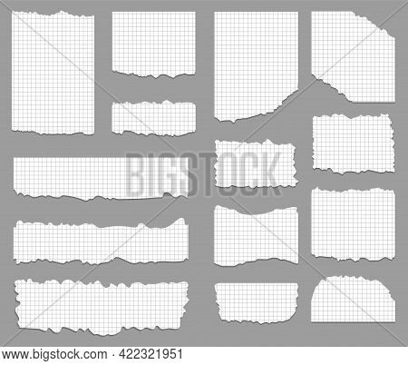 Set Of Ripped And Torn Cell Paper Background In Square. Vector Illustration.