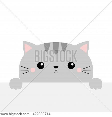 Gray Cat Holding Empty Paper, Table. Cute Cartoon Kawaii Funny Kitten Kitty Hiding Behind Paper Wall
