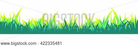 Green Grass.meadow Lawn Grass Isolated On White Background.vector Illustration.