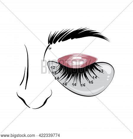 Eyelash Mapping, Eyebrows Microblading Beauty Salon Treatment. Professional Beauty Branding Social M