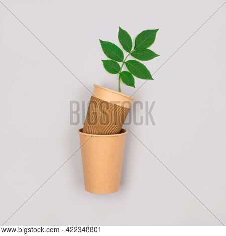 Eco-friendly Coffee To Go Cups - Kraft Paper Cup With Green Leaves Above On Light Grey Background Wi