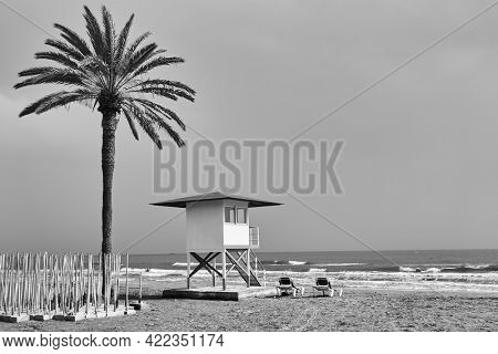 Beach with palm and lifeguard tower by the sea in off season  - Black and white photography