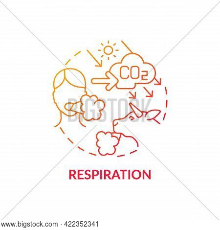 Respiration Concept Icon. Natural Co2 Abstract Idea Thin Line Illustration. Consuming Oxygen And Car