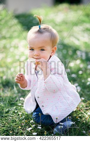 Little Baby Girl With A Ponytail On Her Head Gnaws A Fruit Chip Sitting On Her Knees On A Green Lawn