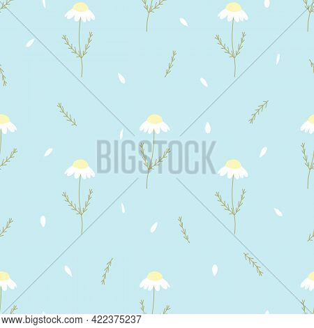 Vector Seamless Pattern With Chamomile And Petals On Blue Background. For  Decoration, Invitation Ba