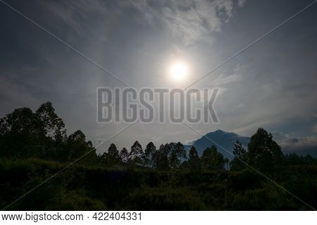 View On Cloudy Sky And Forest During Dawn.