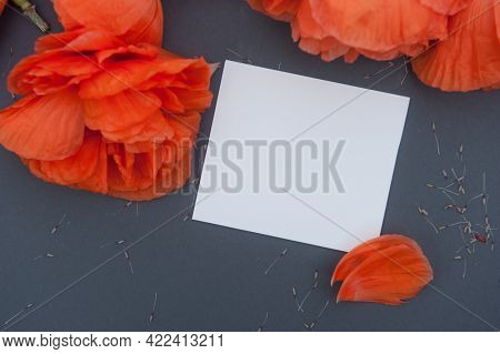 Red poppies on wooden backdrop with empty space white business card mockup