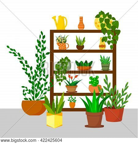 Rack With Flowers - For The Home Garden. Green Plants In Pots For The Home. Vector Illustration. For