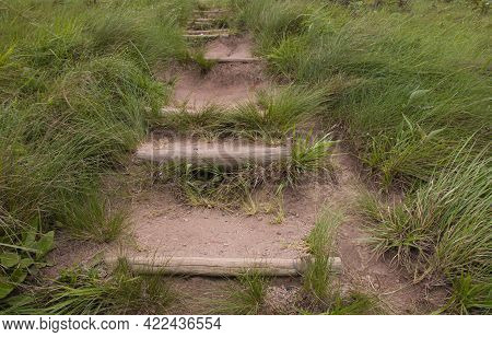 Stepped Hiking Pathway Bordered By Green Grass