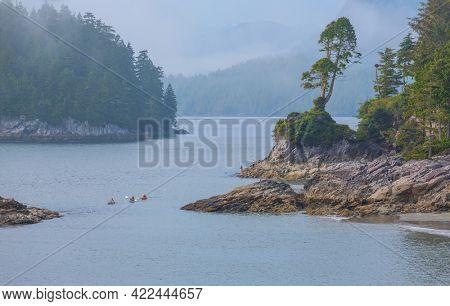Vancouver island, British Columbia, Canada
