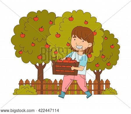 Little Girl Carrying Wooden Crate With Apples Working On The Farm Vector Illustration