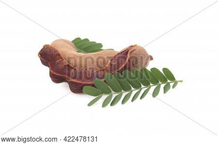 Fresh Tamarind Fruits And Leaves Isolated On White Background