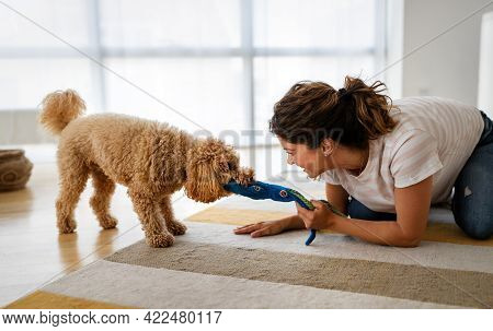 Beautiful Happy Woman Playing With A Nice Cute Dog At Home