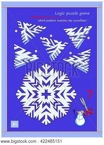 Logic Puzzle Game For Children And Adults. Which Pattern Matches The Snowflake? Page For Kids Brain
