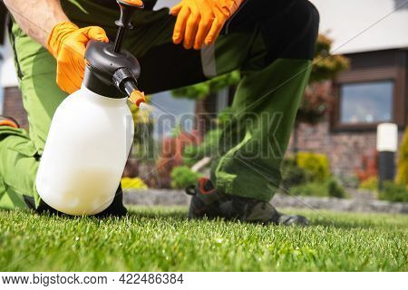 Caucasian Men Fighting Grass Lawn Weeds By Spraying Chemicals.
