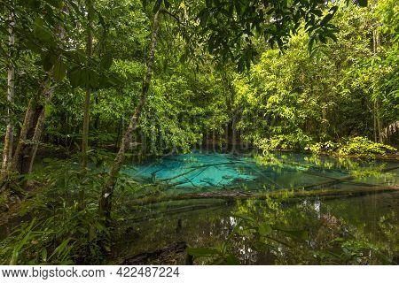 Emerald Pool (sra Morakot) In Krabi Province, Thailand. Beautiful Nature Scene Of Crystal Clear Blue