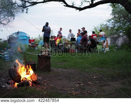 Young Guys And Girl On A Picnic In A Pine Forest Near The Fire In The Foreground. In The Fire Burnin