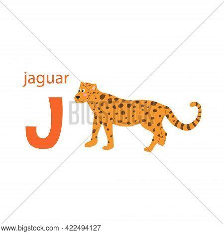 Cute Jaguar Card. Alphabet With Animals. Colorful Design For Teaching Children The Alphabet, Learnin