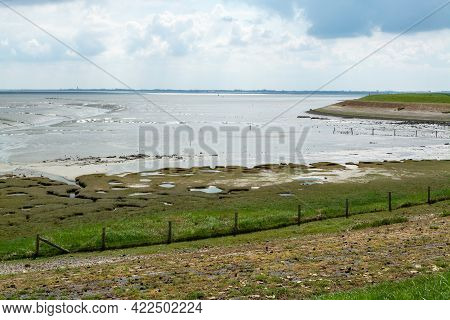 Panoramic View On Sea Coast In Zeeland, Netherlands, During Low Tide.