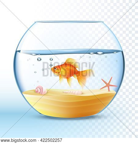 Goldfish Swimming In Round Fishbowl With Shell And Starfish On The Sand Bottom Poster Abstract Vecto