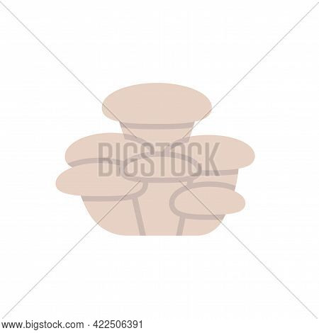 Oyster Mushroom Icon. Vector Isolated Flat Color Icon. Modern Glyph Sticker Design. Illustrations Of