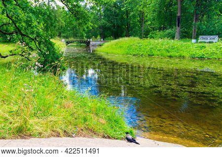 Bridge Across A Small River In Catherine Park In Pushkin (tsarskoye Selo), Russia